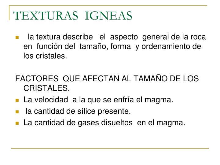TEXTURAS  IGNEAS