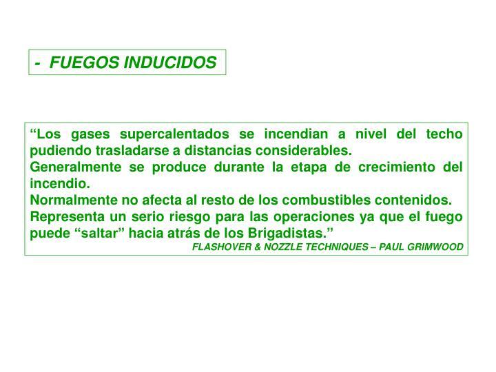 -  FUEGOS INDUCIDOS