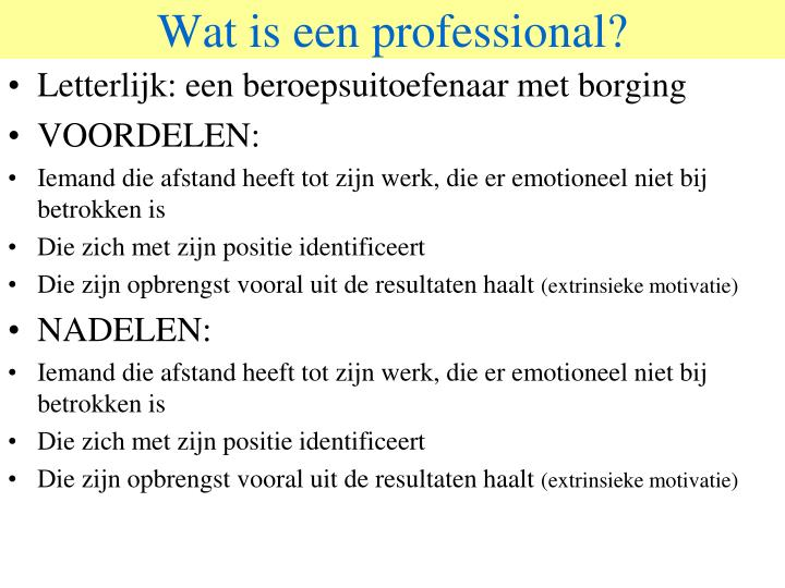 Wat is een professional?