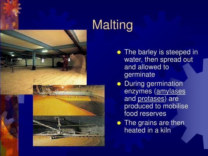 Malting