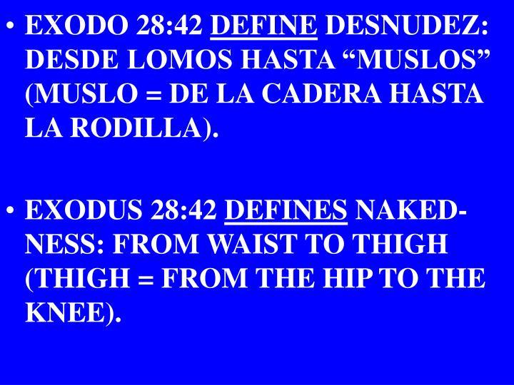 EXODO 28:42