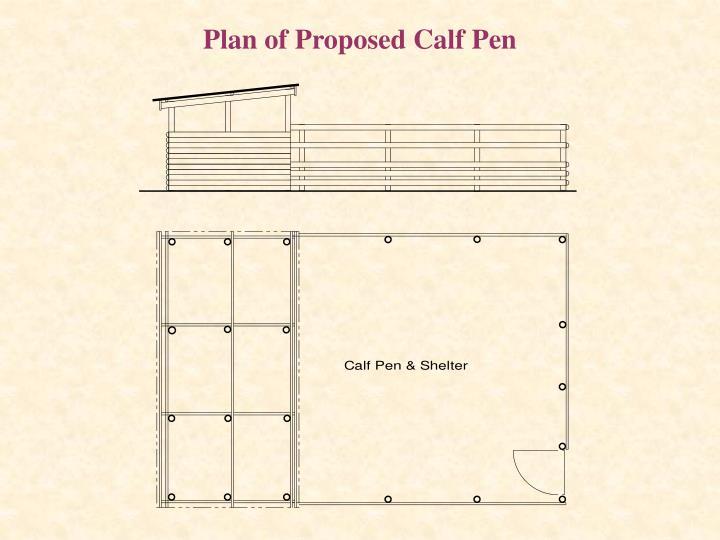 Plan of Proposed Calf Pen