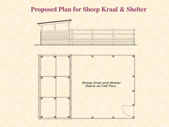 Proposed Plan for Sheep Kraal & Shelter