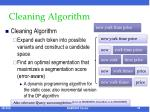 cleaning algorithm