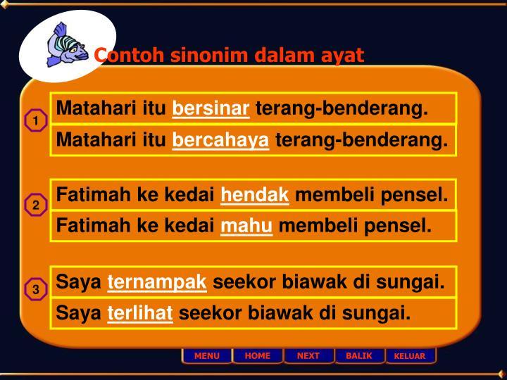 Contoh sinonim dalam ayat