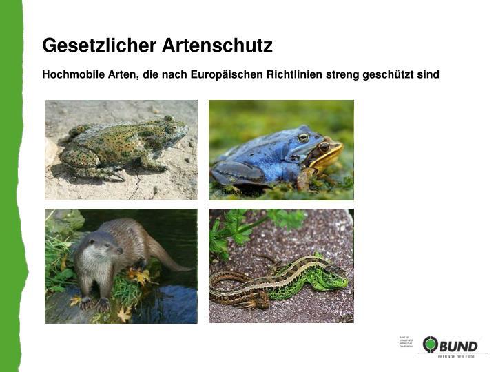 Gesetzlicher Artenschutz