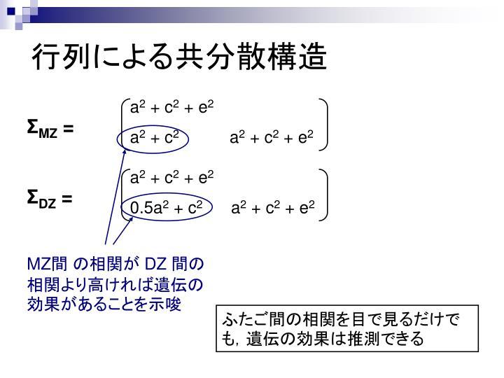 行列による共分散構造