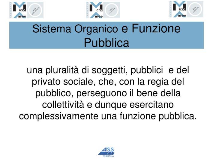 Sistema Organico