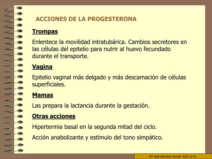 ACCIONES DE LA PROGESTERONA