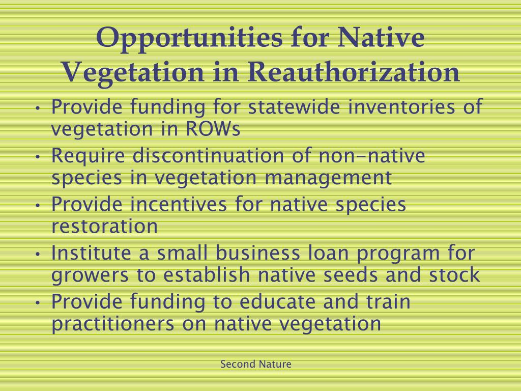 Opportunities for Native Vegetation in Reauthorization