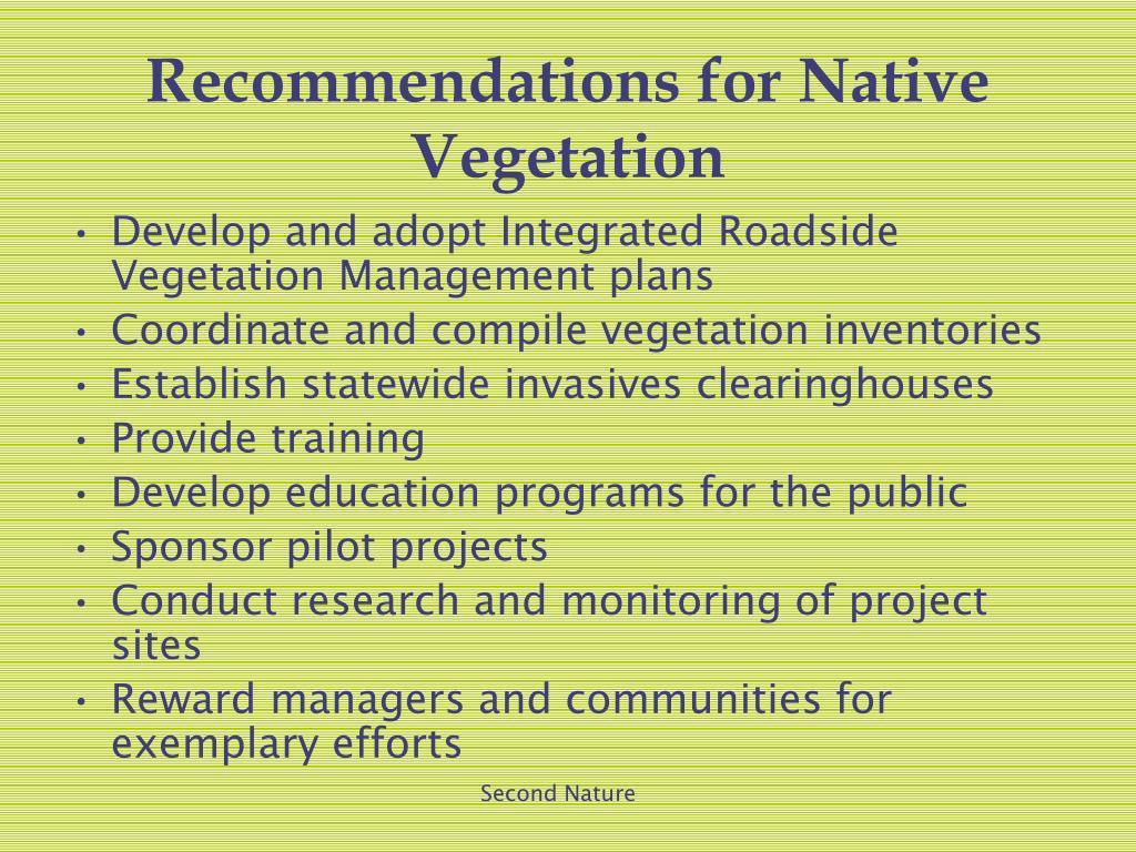 Recommendations for Native Vegetation