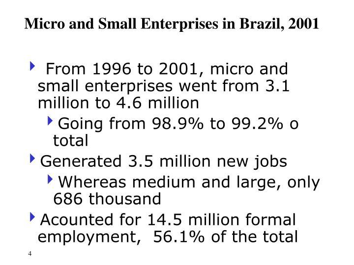 Micro and Small Enterprises in Brazil, 2001