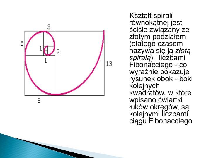 Kształt spirali równokątnej jest ściśle związany ze złotym podziałem (dlatego czasem nazywa się ją