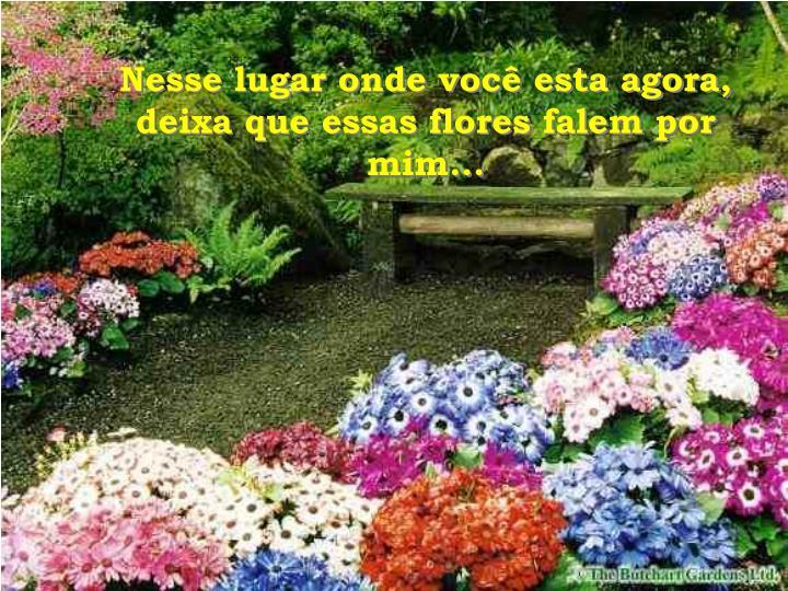 Nesse lugar onde você esta agora, deixa que essas flores falem por mim...
