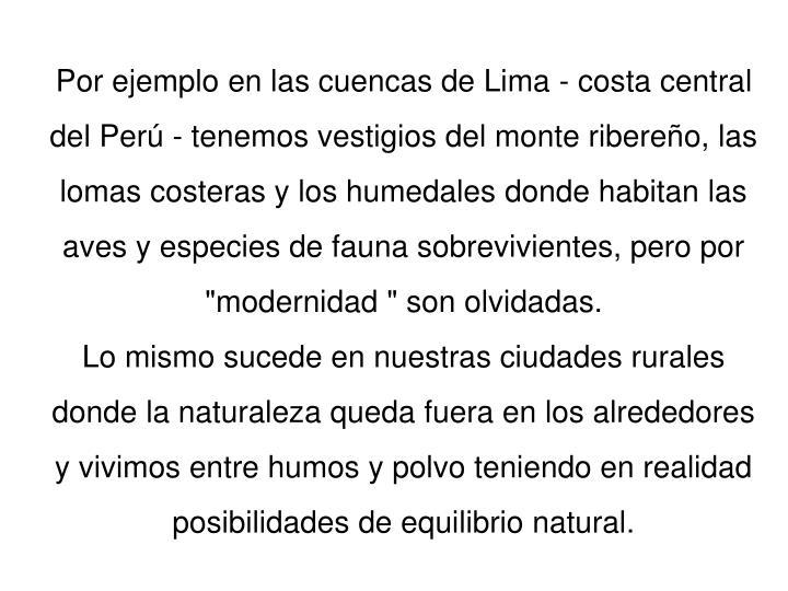 """Por ejemplo en las cuencas de Lima - costa central del Perú - tenemos vestigios del monte ribereño, las lomas costeras y los humedales donde habitan las aves y especies de fauna sobrevivientes, pero por """"modernidad """" son olvidadas."""