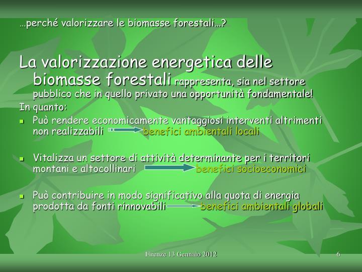 …perché valorizzare le biomasse forestali…?
