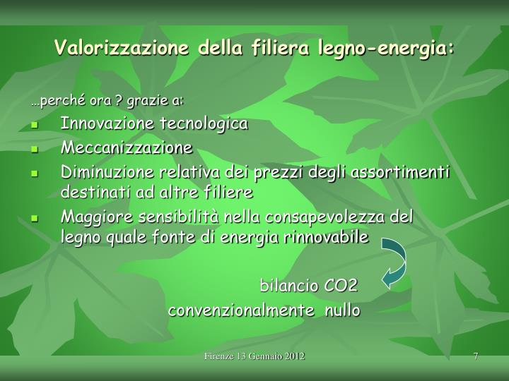 Valorizzazione della filiera legno-energia: