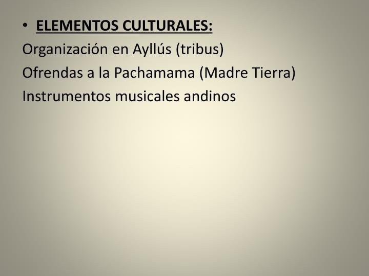 ELEMENTOS CULTURALES: