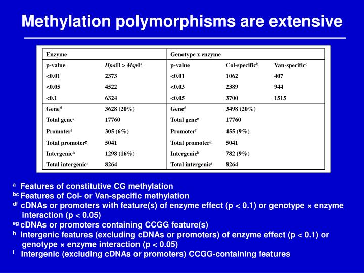 Methylation polymorphisms are extensive