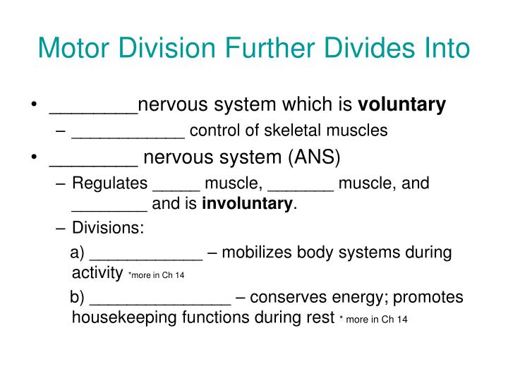 Motor Division Further Divides Into
