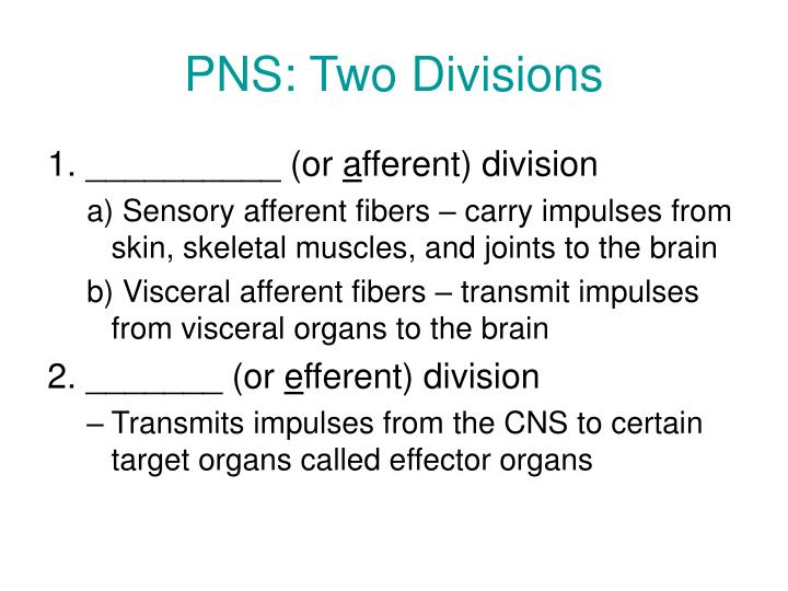 PNS: Two Divisions