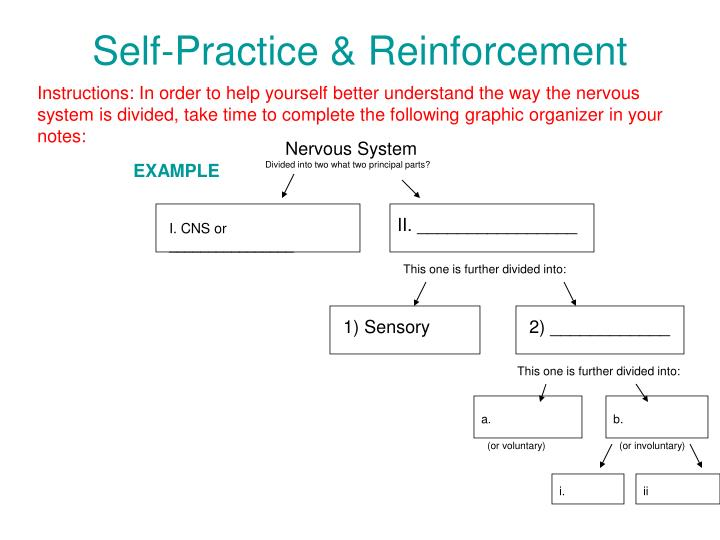 Self-Practice & Reinforcement