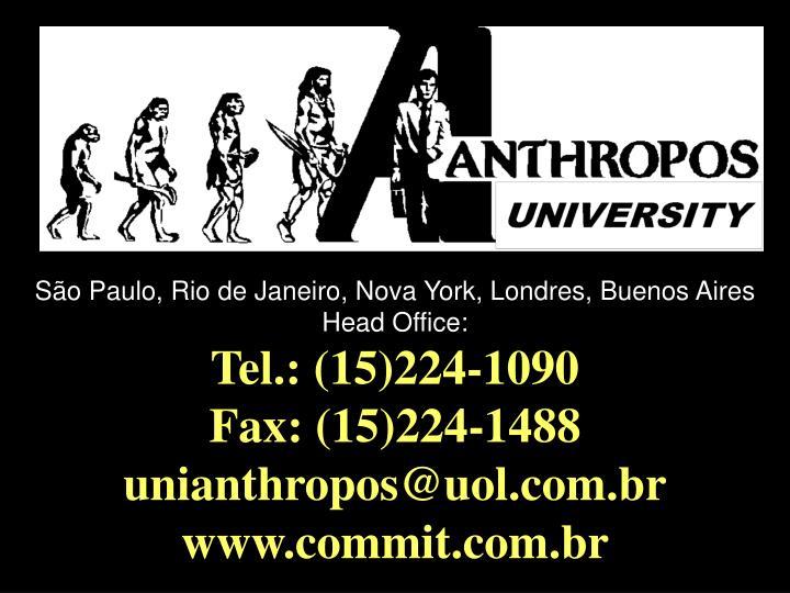 São Paulo, Rio de Janeiro, Nova York, Londres, Buenos Aires