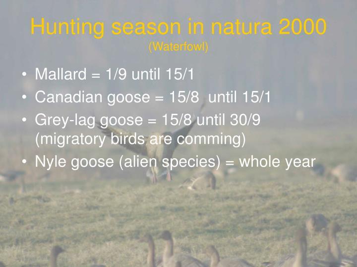 Hunting season in natura 2000