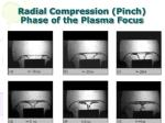 radial compression pinch phase of the plasma focus