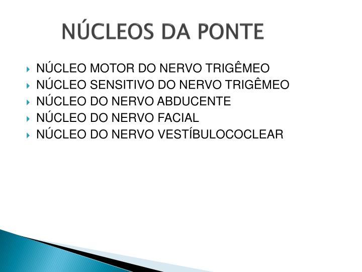 NÚCLEOS DA PONTE
