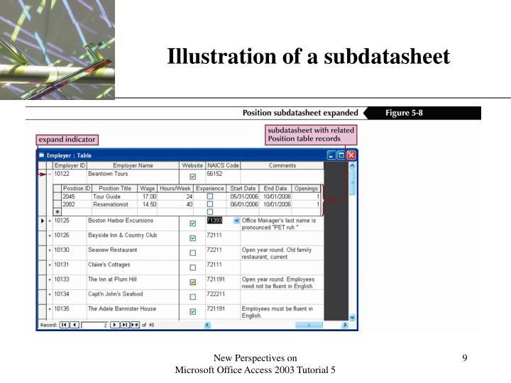 Illustration of a subdatasheet