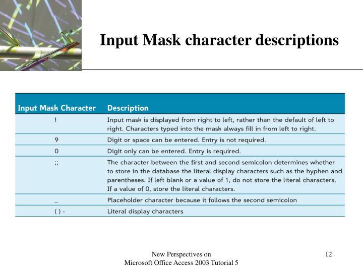 Input Mask character descriptions