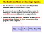 the hamiltonian matrix in schroedinger equation