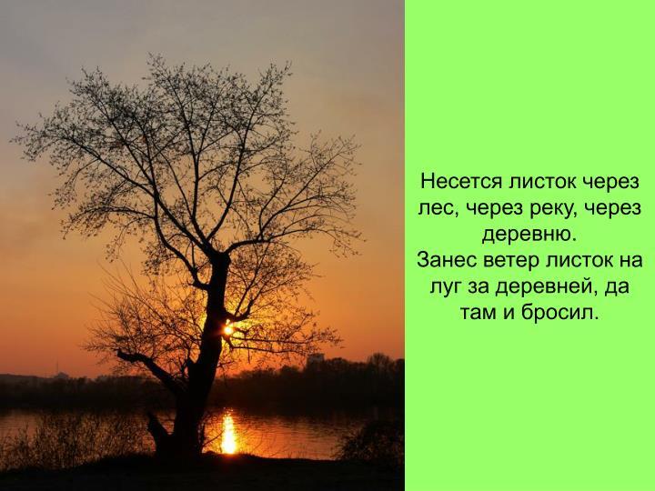 Несется листок через лес, через реку, через деревню.