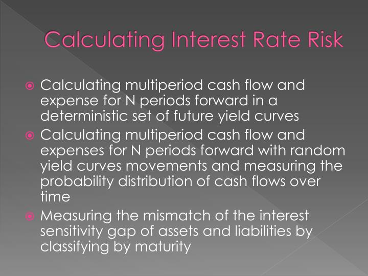 Calculating Interest Rate Risk