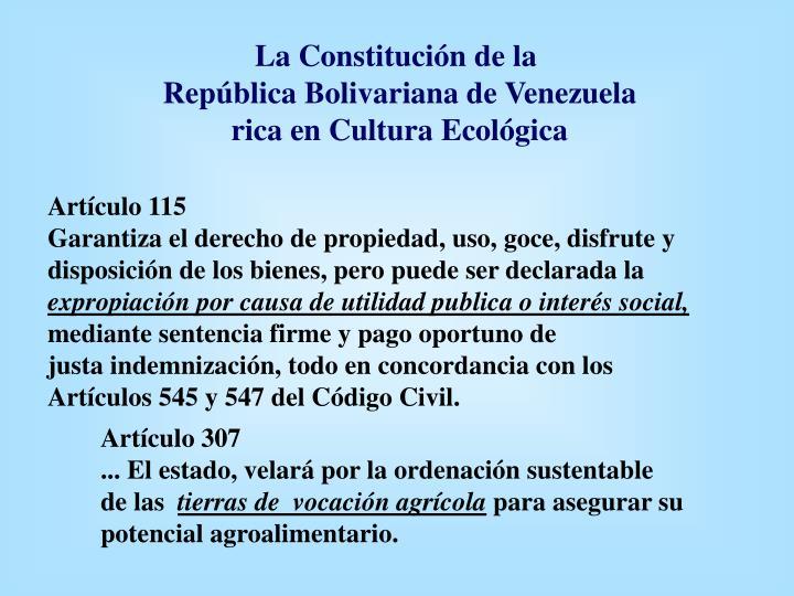 La Constitución de la