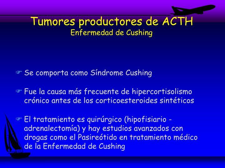 Tumores productores de ACTH