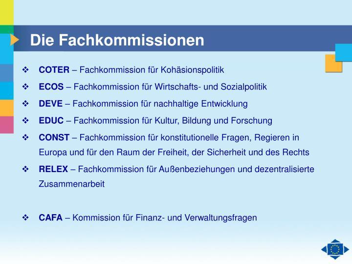 Die Fachkommissionen