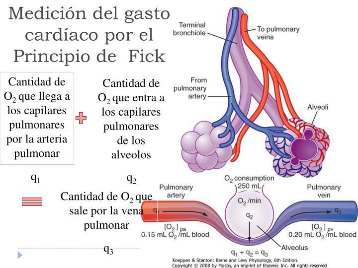 Medición del gasto cardíaco por el Principio de  Fick