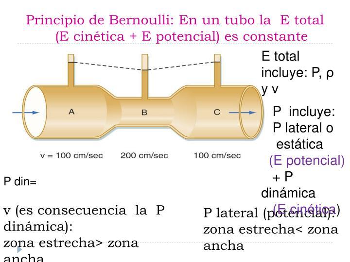 Principio de Bernoulli: En un tubo la  E total        (E cinética + E potencial) es constante