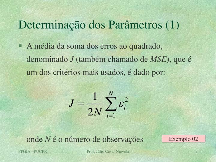Determinação dos Parâmetros (1)