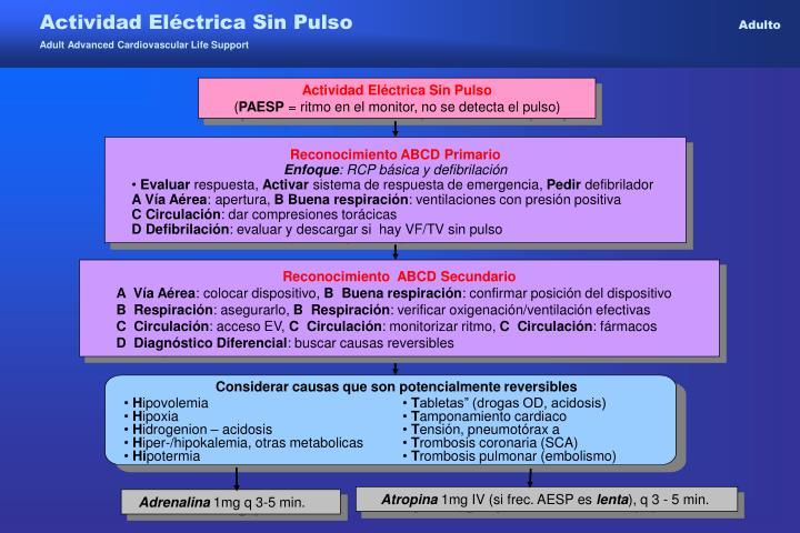 Actividad Eléctrica Sin Pulso
