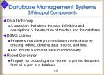 database management systems 3 principal components