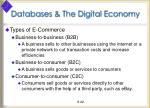 databases the digital economy2