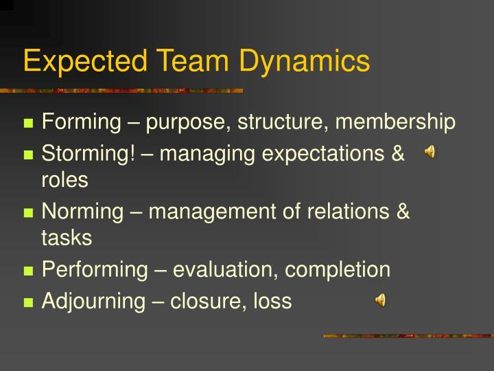 Expected Team Dynamics