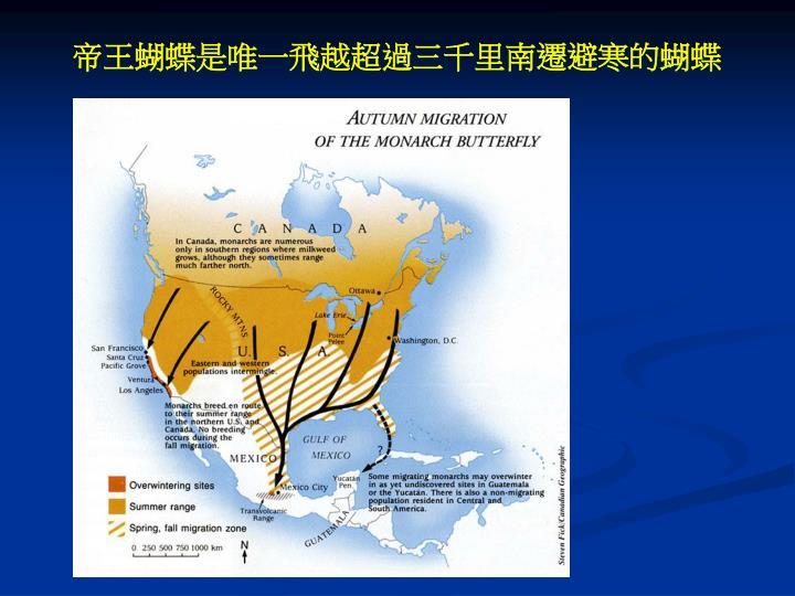 帝王蝴蝶是唯一飛越超過三千里南遷避寒的蝴蝶