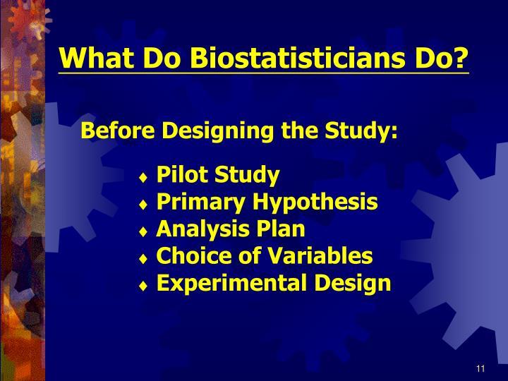 What Do Biostatisticians Do?