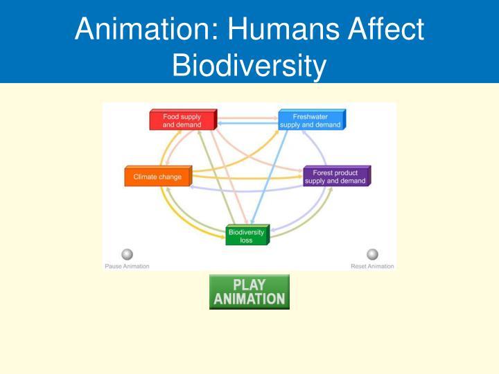 Animation: Humans Affect Biodiversity