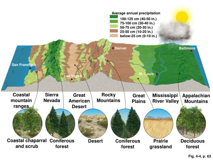 Average annual precipitation