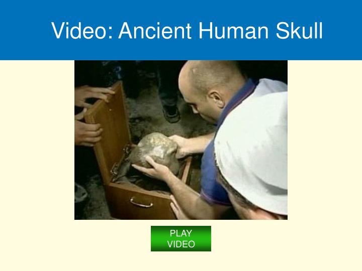 Video: Ancient Human Skull